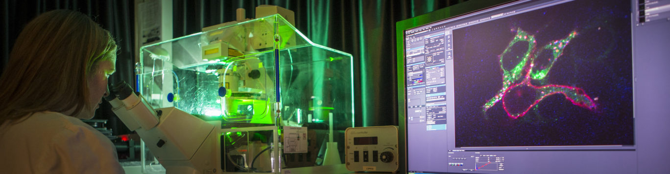 Regenerative Medicine Utrecht